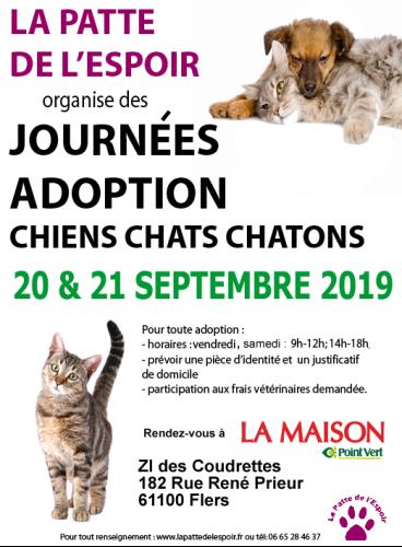 Week end adoption au magasin La Maison Point Vert Flers