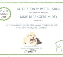 Perfectionnement Massage canin et fleurs de Bach
